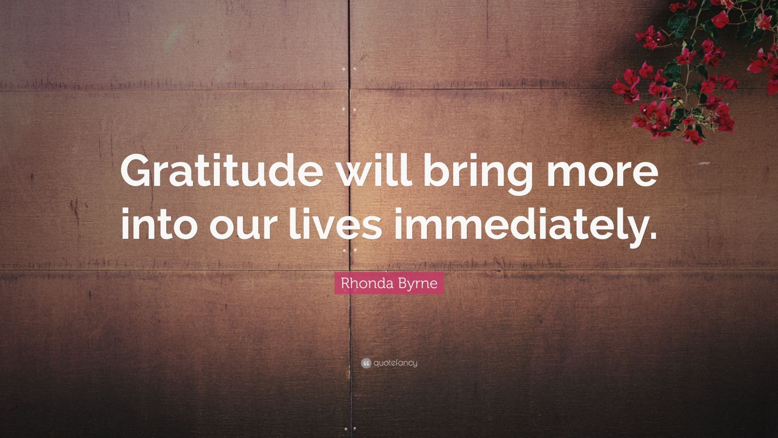 """Rhonda Byrne Quote: """"Gratitude will bring more into our lives immediately."""""""