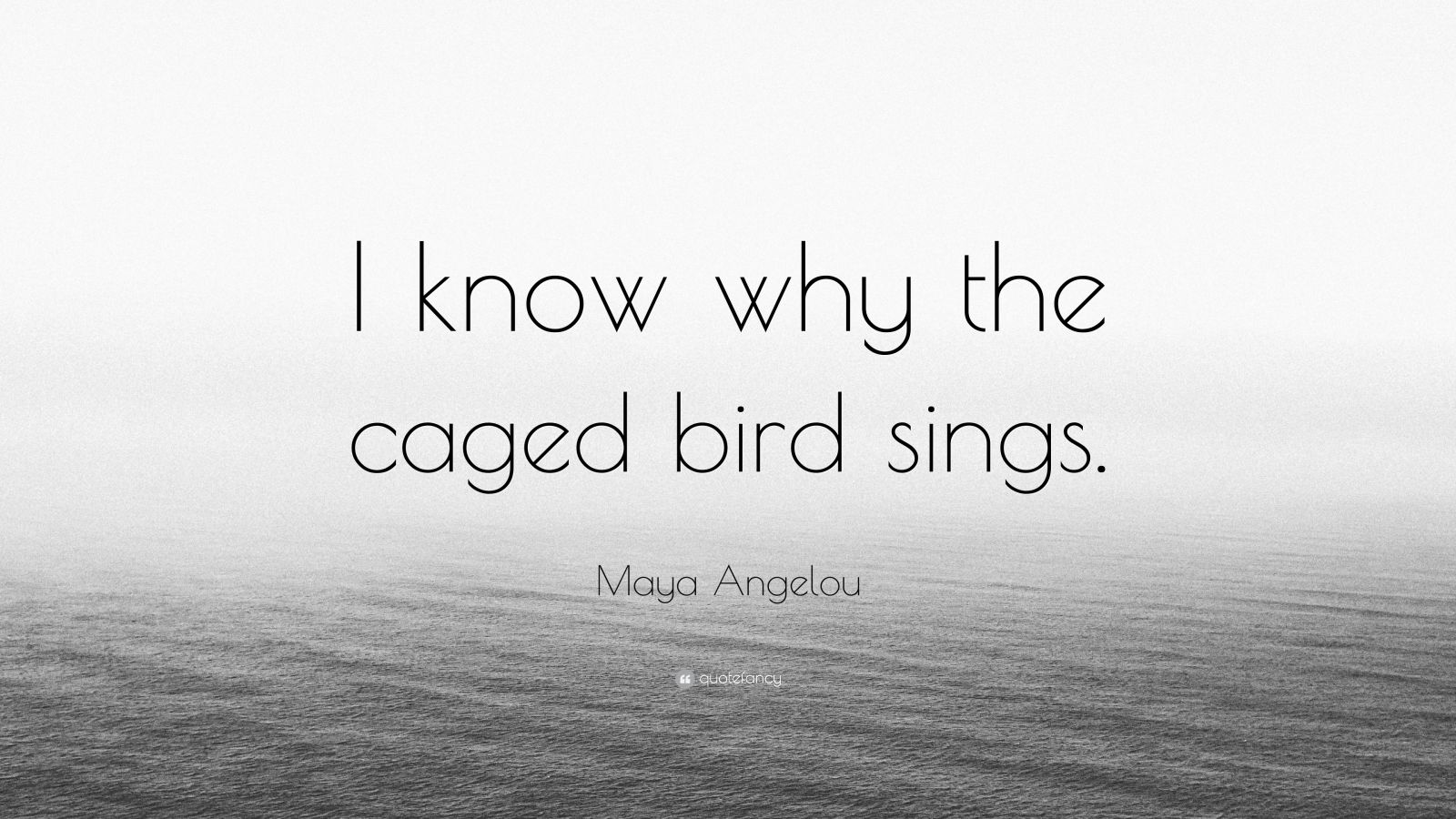 """Maya Angelou Quote: """"I know why the caged bird sings."""""""