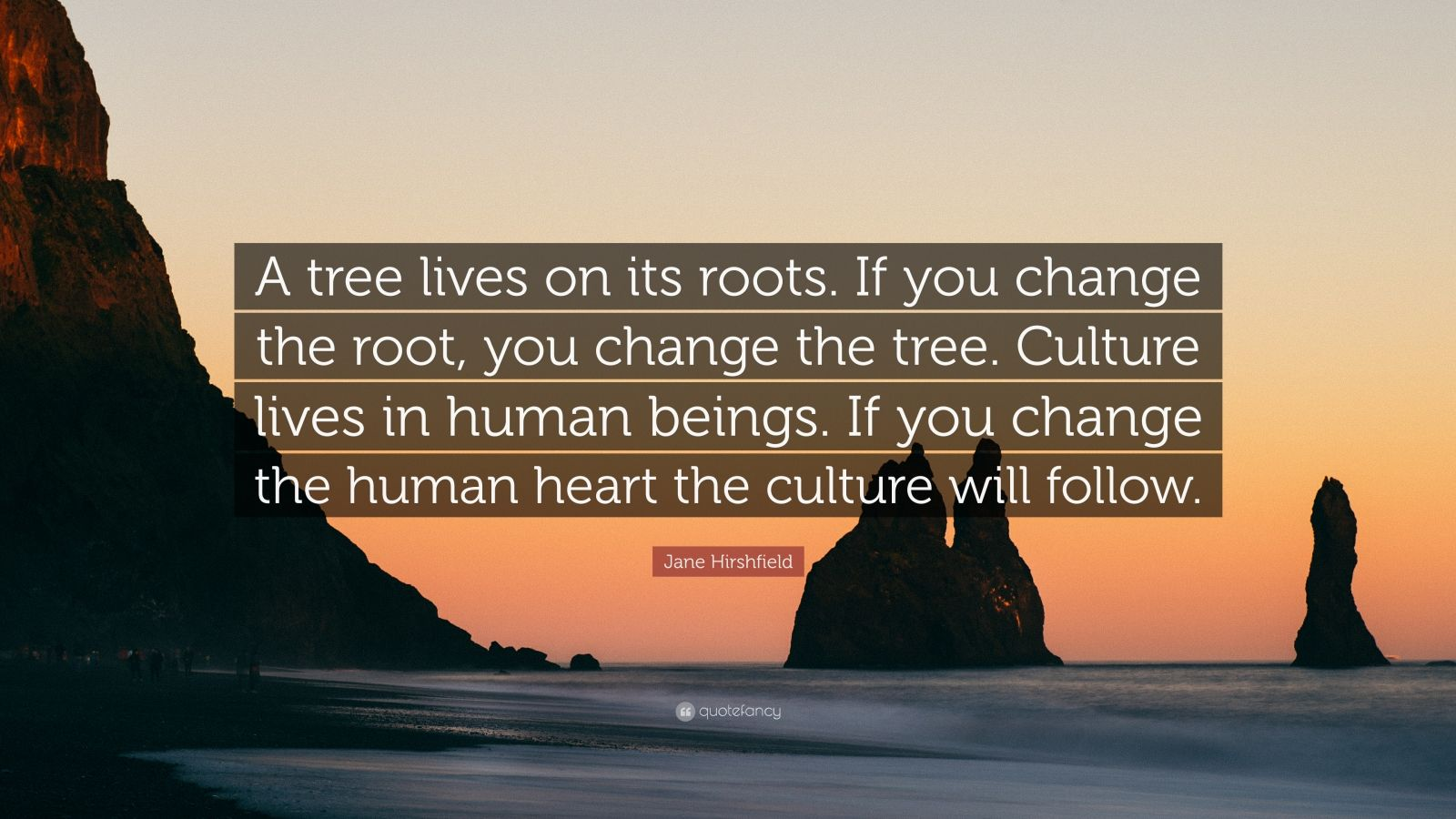 the roots essay human live Human communication essay when human being started to live in groups and organize first structures the term 'communication' has latin roots and comes.