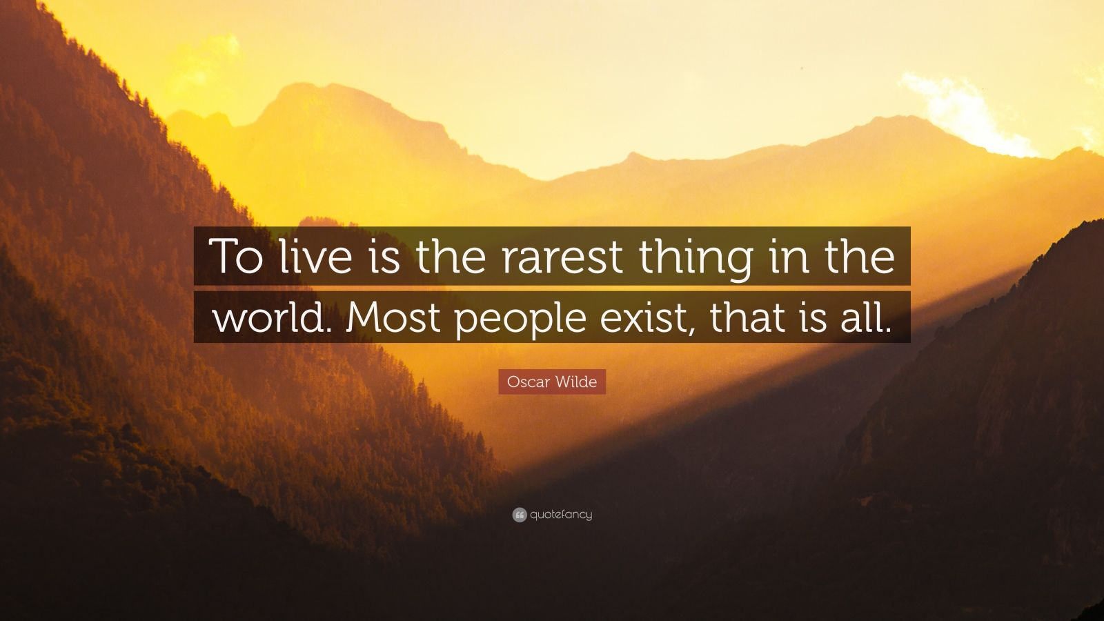 to live is the rarest thing in the world essay World's largest collection of essays published by experts share your essayscom is the home of thousands of essays published by experts like you publish your original essays now.