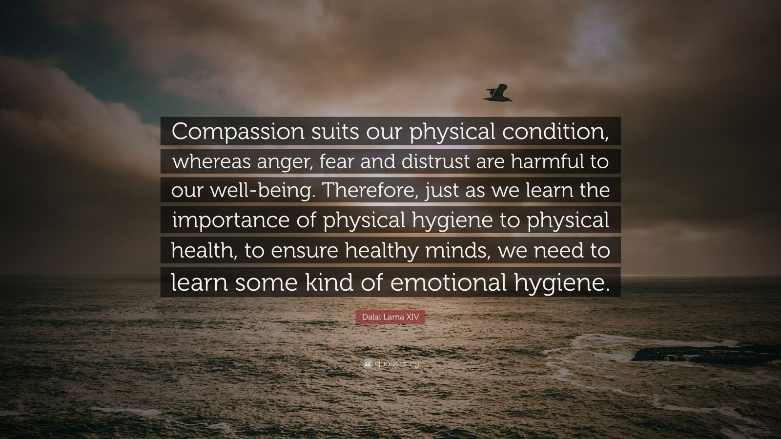 the importance of compassion in our Creating more compassionate classrooms by too often i forget the importance and necessity of we plan strategically to increase compassion in our.