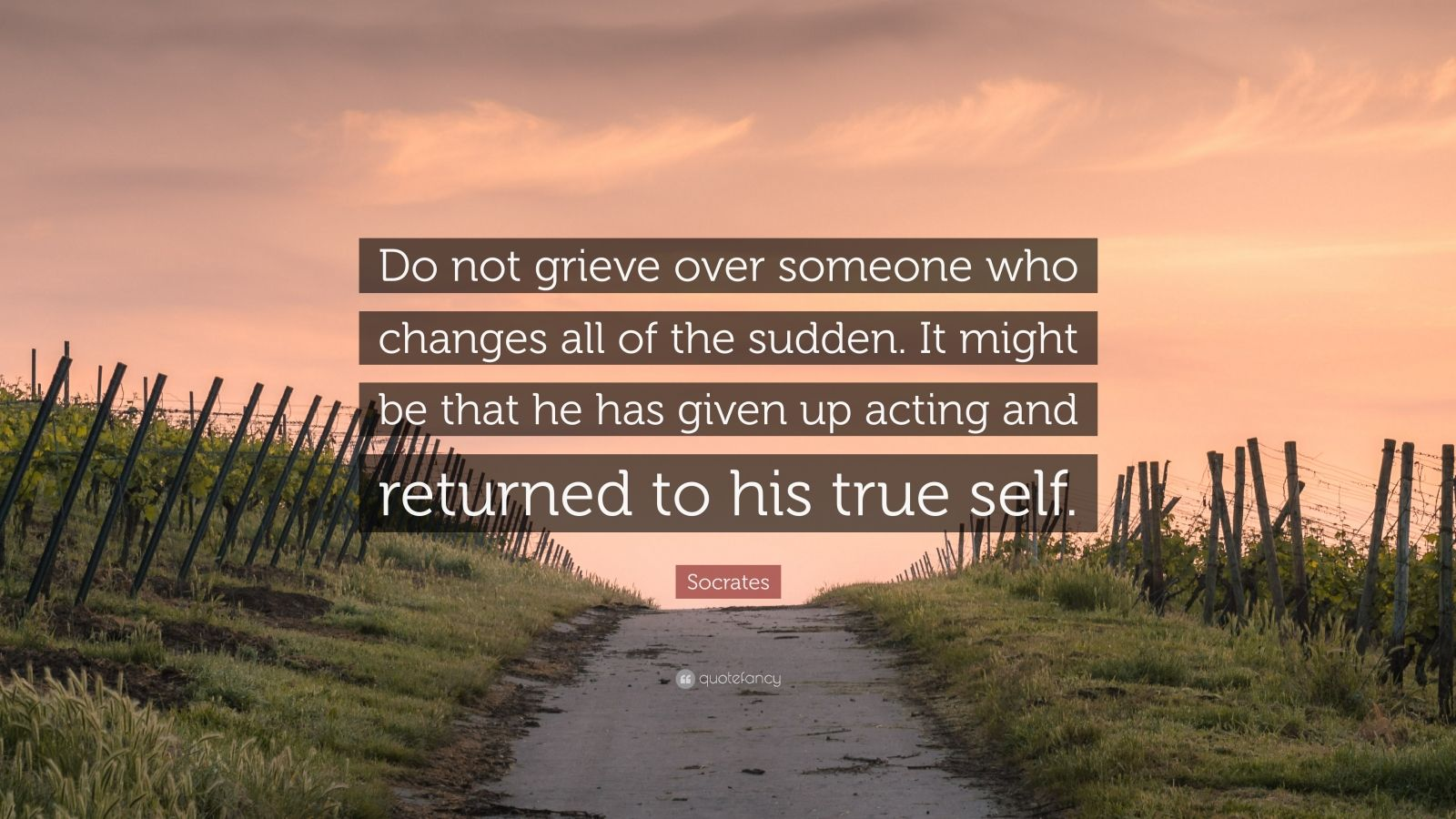 "Socrates Quote: ""Do not grieve over someone who changes all of the sudden. It might be that he has given up acting and returned to his true self."""