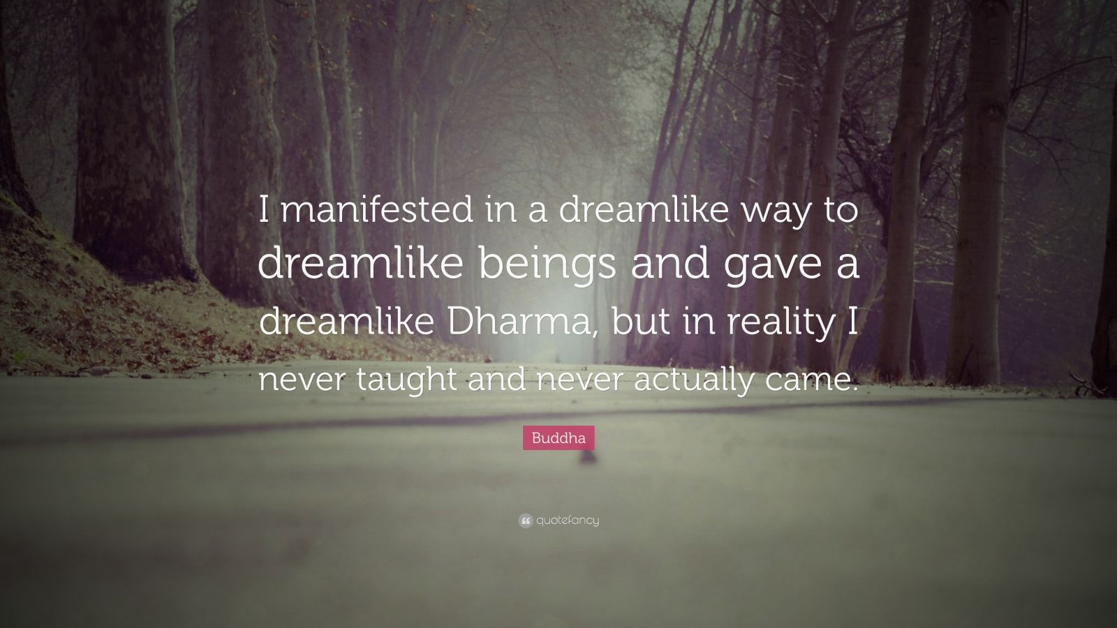 "Buddha Quote: ""I manifested in a dreamlike way to dreamlike beings and gave a dreamlike Dharma, but in reality I never taught and never actually came."""