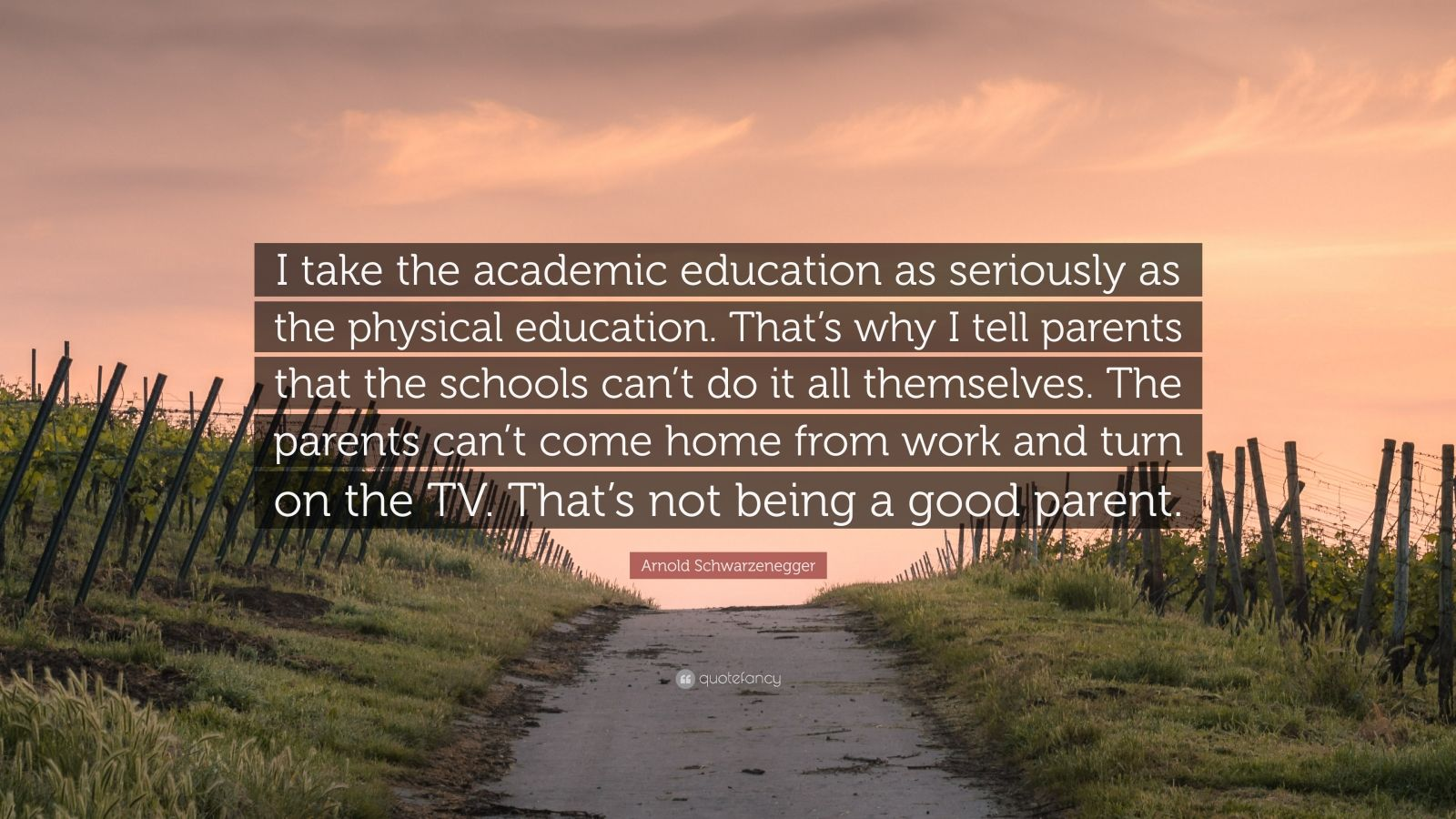 "Arnold Schwarzenegger Quote: ""I take the academic education as seriously as the physical education. That's why I tell parents that the schools can't do it all themselves. The parents can't come home from work and turn on the TV. That's not being a good parent."""