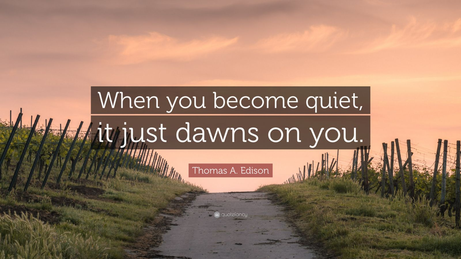 "Thomas A. Edison Quote: ""When you become quiet, it just dawns on you."""