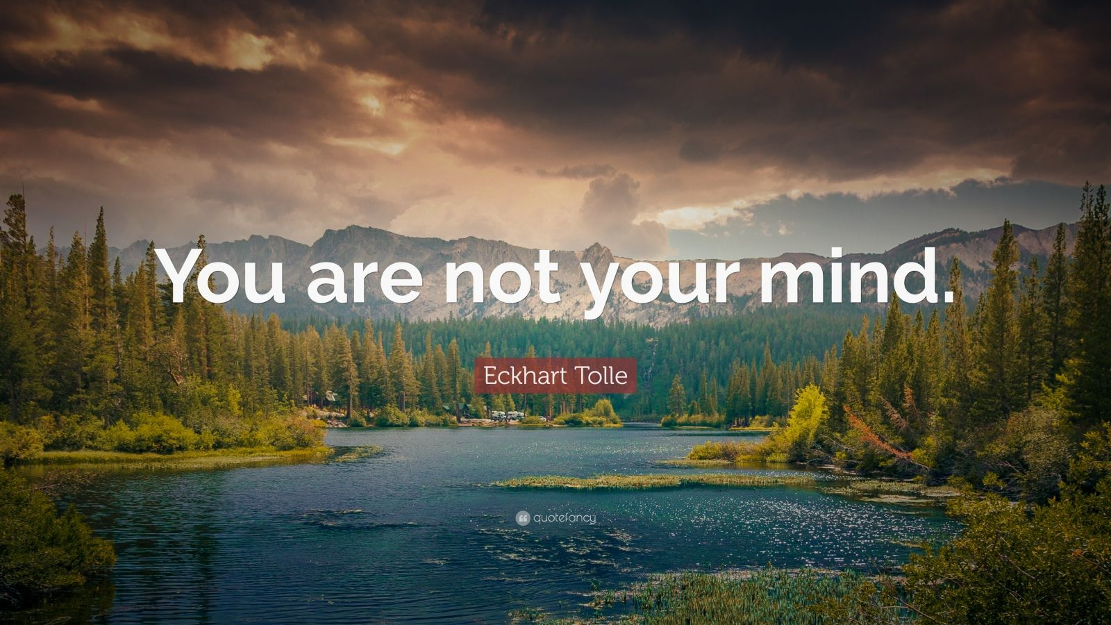 "Eckhart Tolle Quote: ""You are not your mind."""