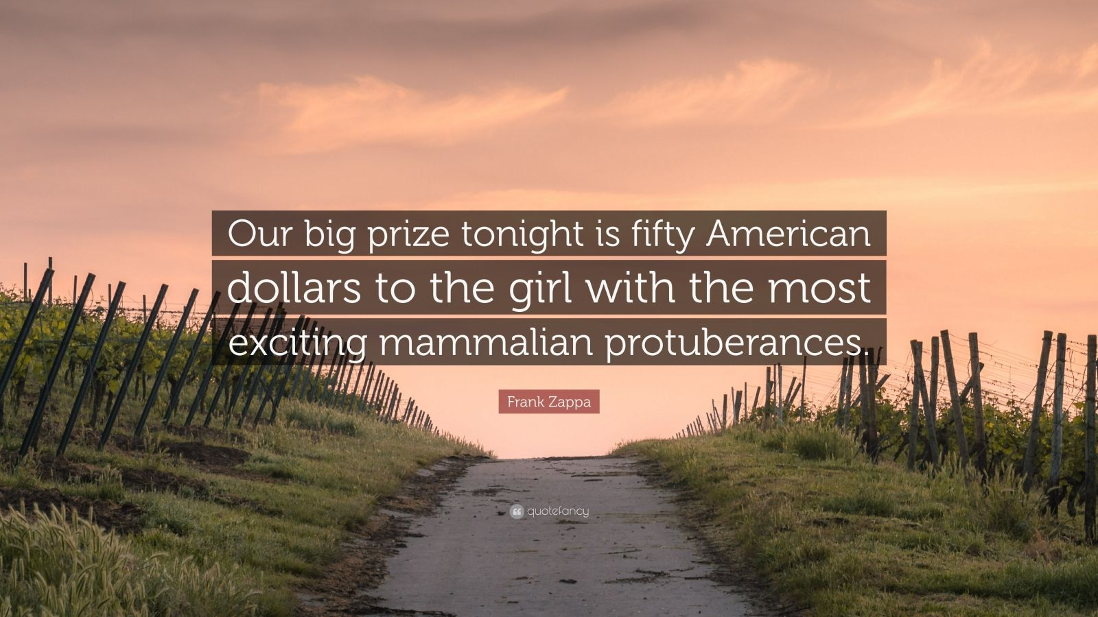 "Frank Zappa Quote: ""Our big prize tonight is fifty American dollars to the girl with the most exciting mammalian protuberances."""