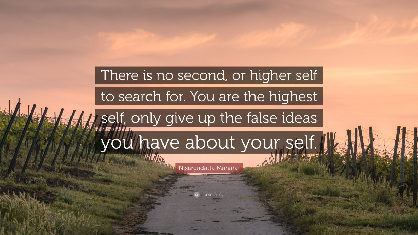 "Nisargadatta Maharaj Quote: ""There is no second, or higher self to search for. You are the highest self, only give up the false ideas you have about your self."""