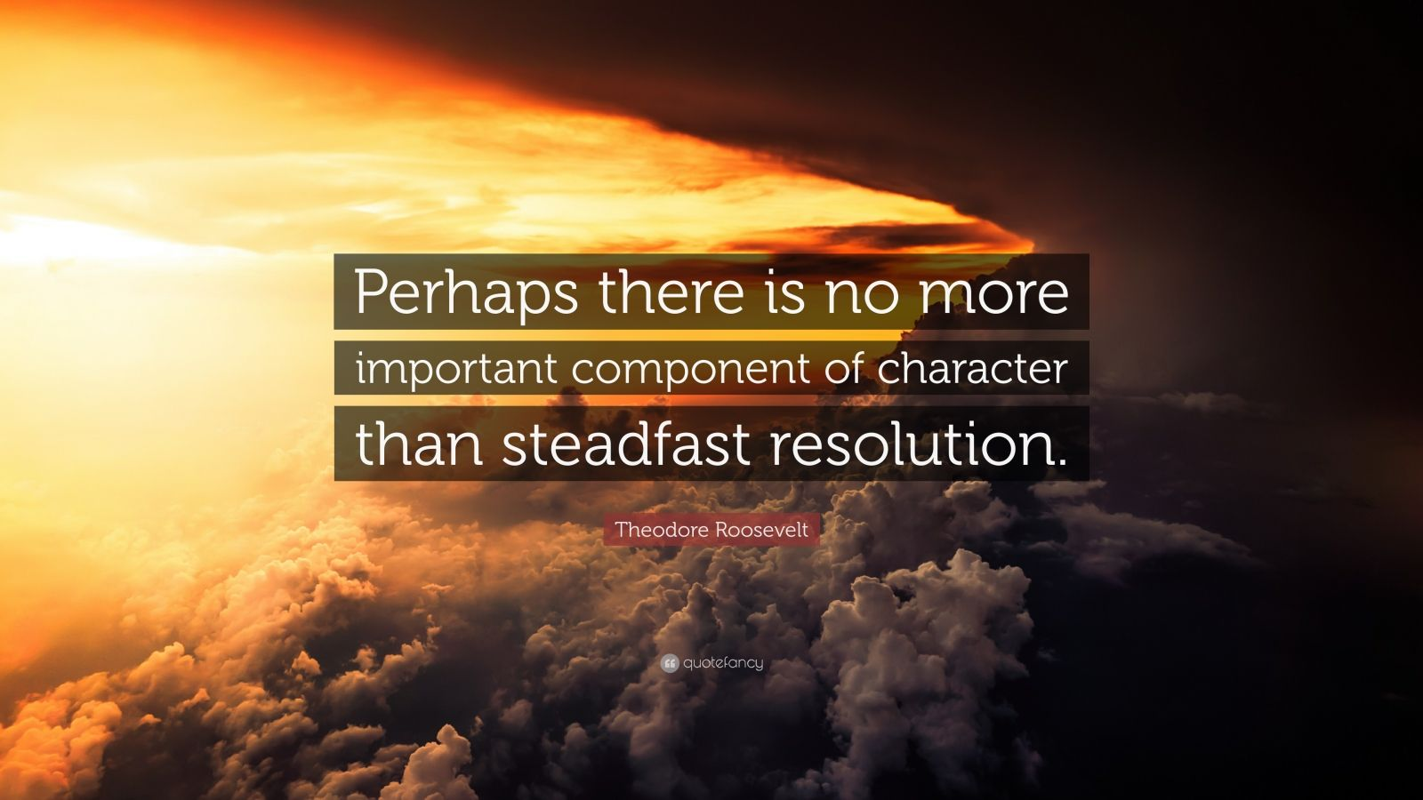 """Theodore Roosevelt Quote: """"Perhaps there is no more important component of character than steadfast resolution."""""""