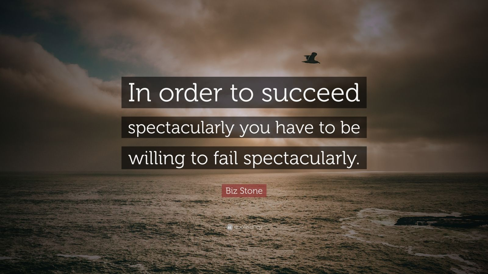"Biz Stone Quote: ""In order to succeed spectacularly you have to be willing to fail spectacularly."""