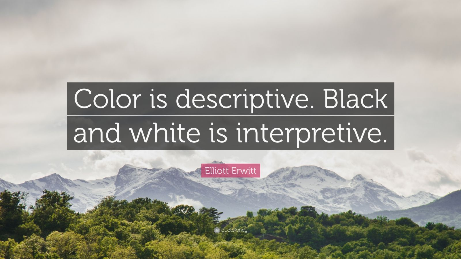 "Elliott Erwitt Quote: ""Color is descriptive. Black and white is interpretive."""