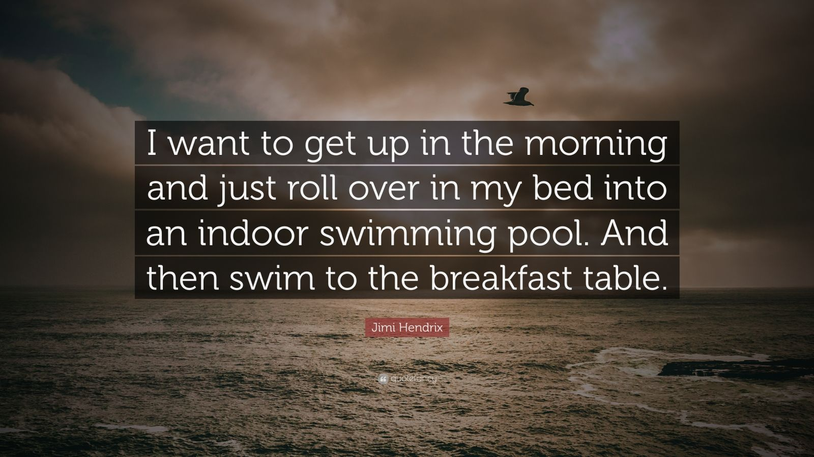 "Jimi Hendrix Quote: ""I want to get up in the morning and just roll over in my bed into an indoor swimming pool. And then swim to the breakfast table."""