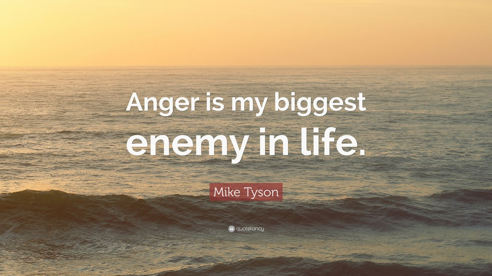Quotes About Anger And Rage: Mike Tyson Quotes (100 Wallpapers)