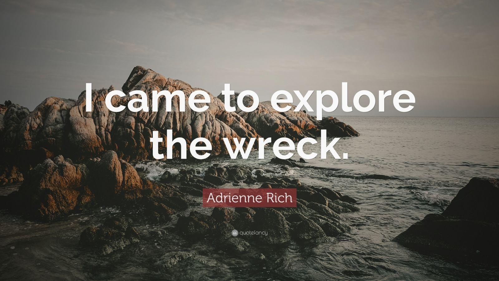 theme diving into wreck adrienne rich short analysis image Analysis of diving into the wreck by adrienne rich adrienne rich, according to the editors of the norton anthology of american literature , is a poet who addresses with particular power the experiences of women, experiences often omitted from history and misrepresented in literature (1444.