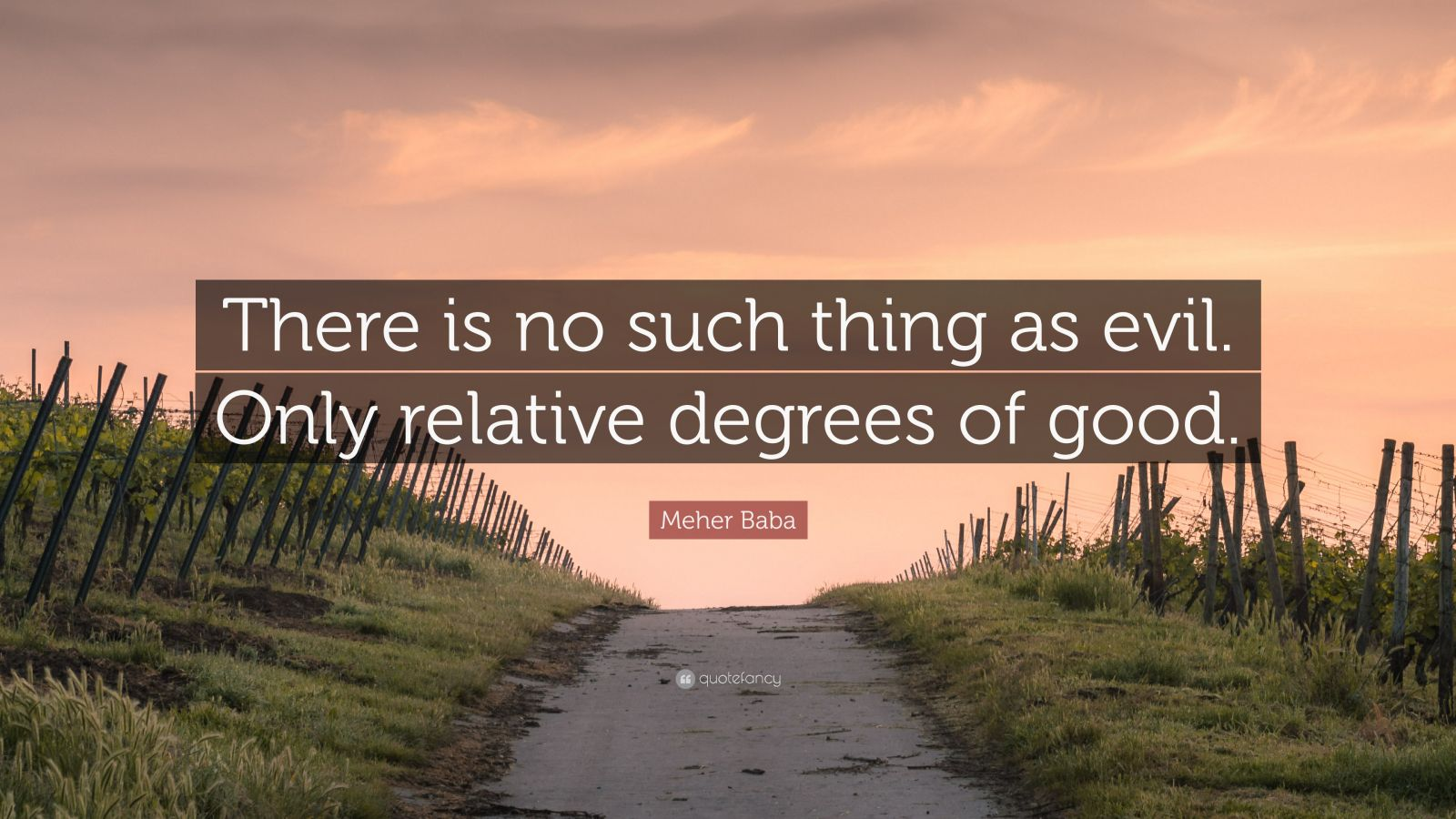 "Meher Baba Quote: ""There is no such thing as evil. Only relative degrees of good."""