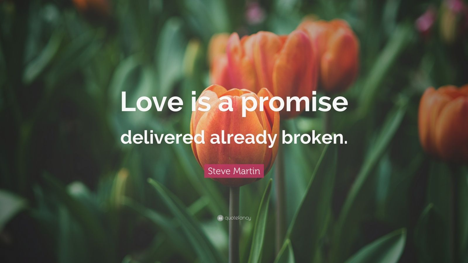 "Steve Martin Quote: ""Love is a promise delivered already broken."""