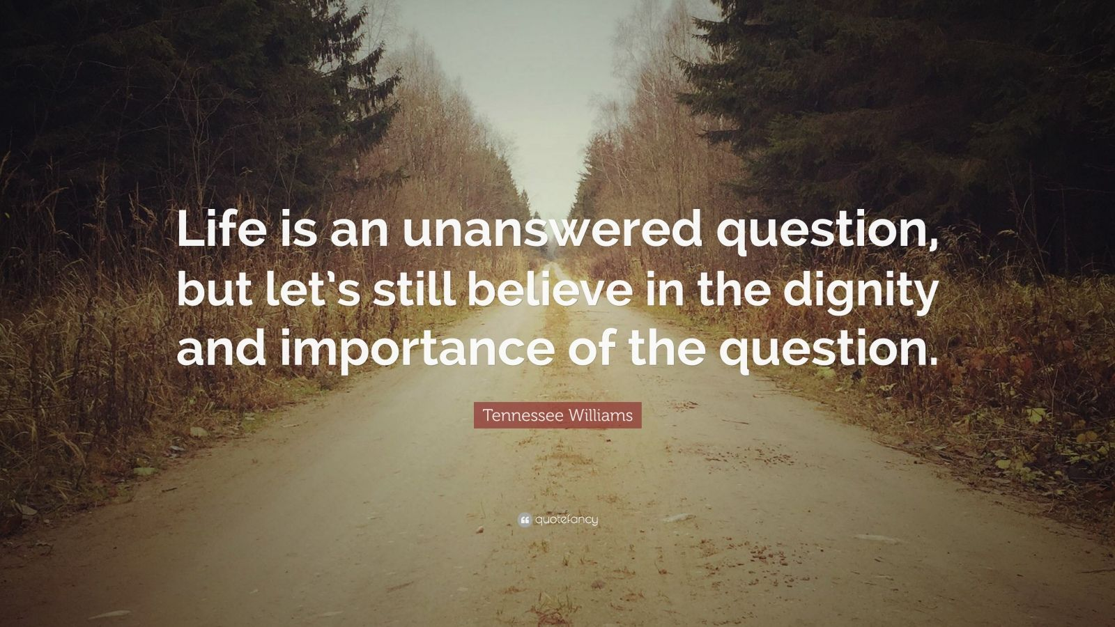 """Tennessee Williams Quote: """"Life is an unanswered question, but let's still believe in the dignity and importance of the question."""""""