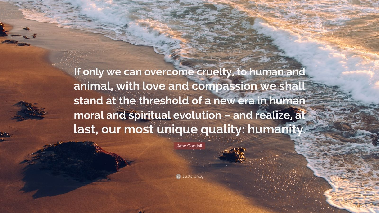 "Jane Goodall Quote: ""If only we can overcome cruelty, to human and animal, with love and compassion we shall stand at the threshold of a new era in human moral and spiritual evolution – and realize, at last, our most unique quality: humanity."""