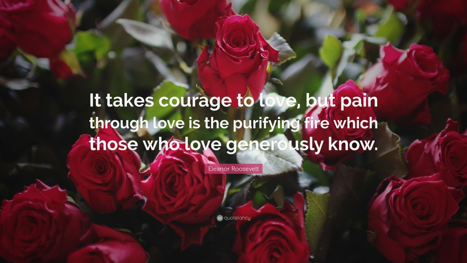 "Eleanor Roosevelt Quote: ""It takes courage to love, but pain through love is the purifying fire which those who love generously know."""