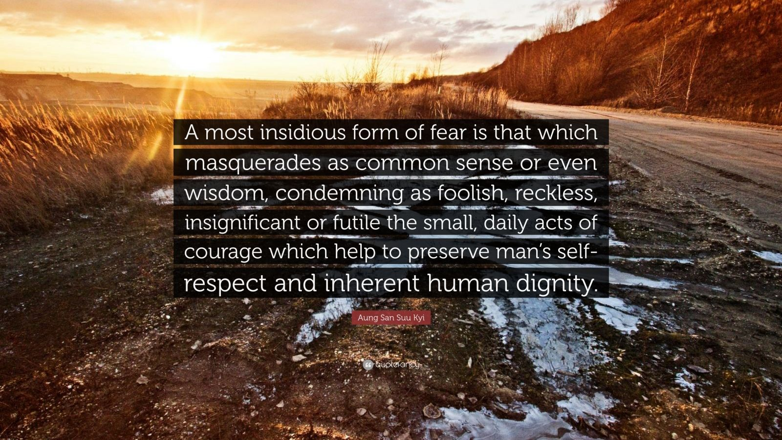 """Aung San Suu Kyi Quote: """"A most insidious form of fear is that which masquerades as common sense or even wisdom, condemning as foolish, reckless, insignificant or futile the small, daily acts of courage which help to preserve man's self-respect and inherent human dignity."""""""