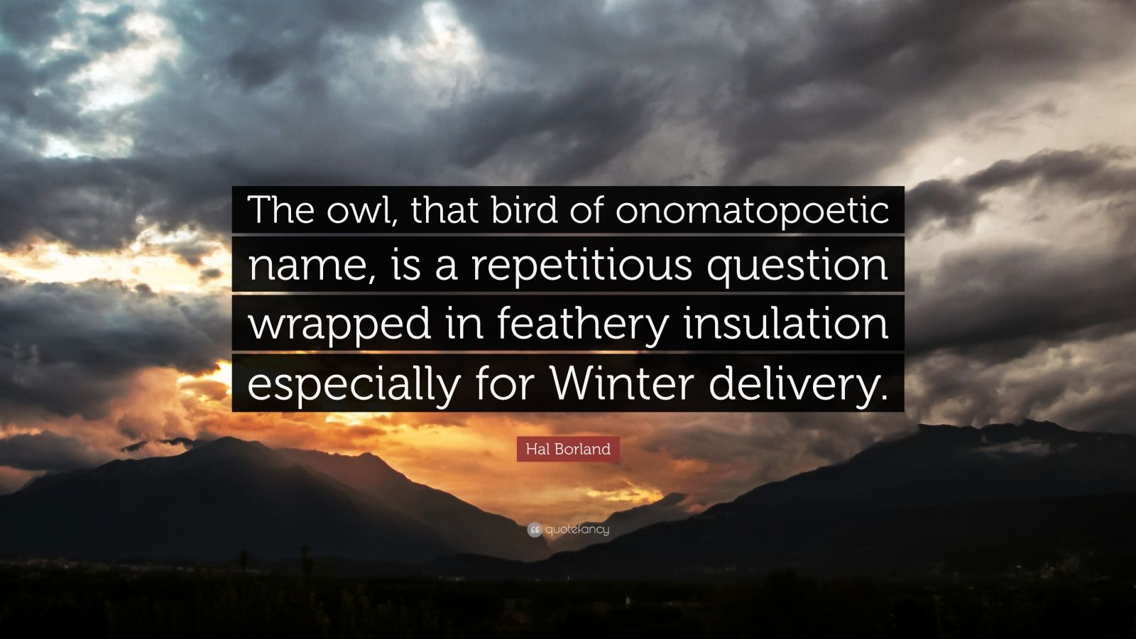 "Hal Borland Quote: ""The owl, that bird of onomatopoetic name, is a repetitious question wrapped in feathery insulation especially for Winter delivery."""