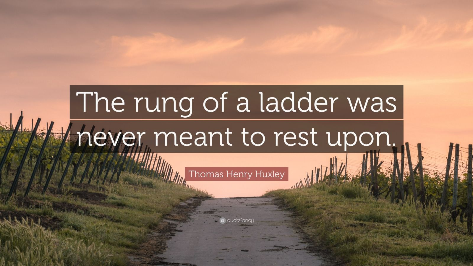 """Thomas Henry Huxley Quote: """"The rung of a ladder was never meant to rest upon."""""""