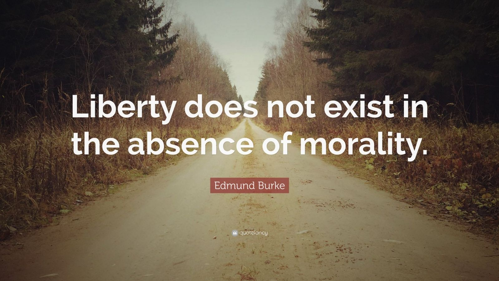 "Edmund Burke Quote: ""Liberty does not exist in the absence of morality."""