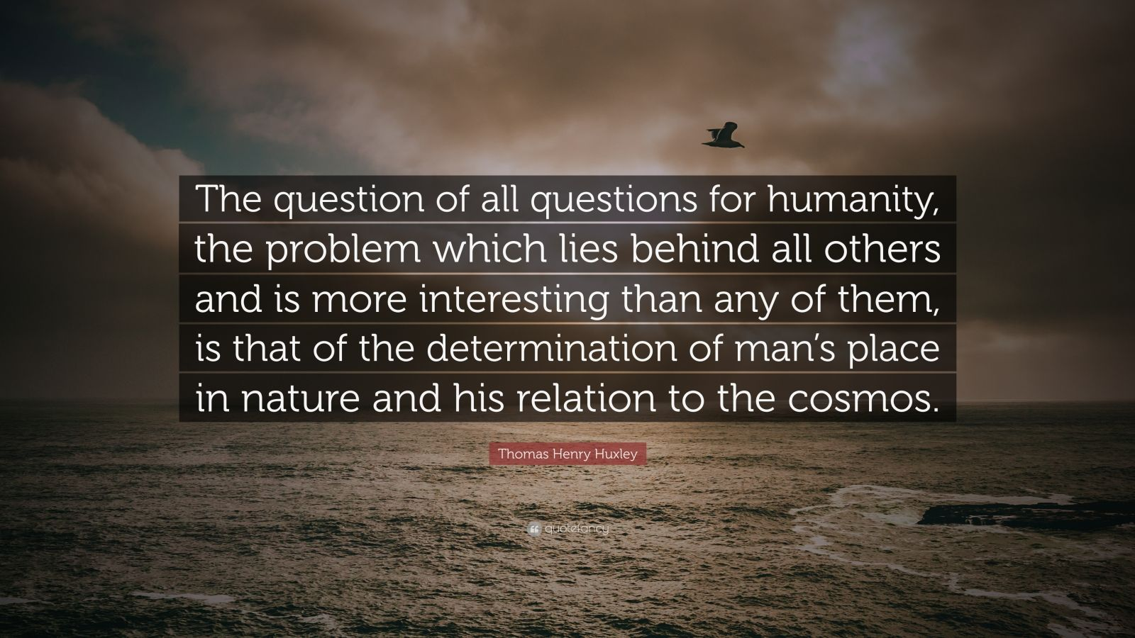 """Thomas Henry Huxley Quote: """"The question of all questions for humanity, the problem which lies behind all others and is more interesting than any of them, is that of the determination of man's place in nature and his relation to the cosmos."""""""