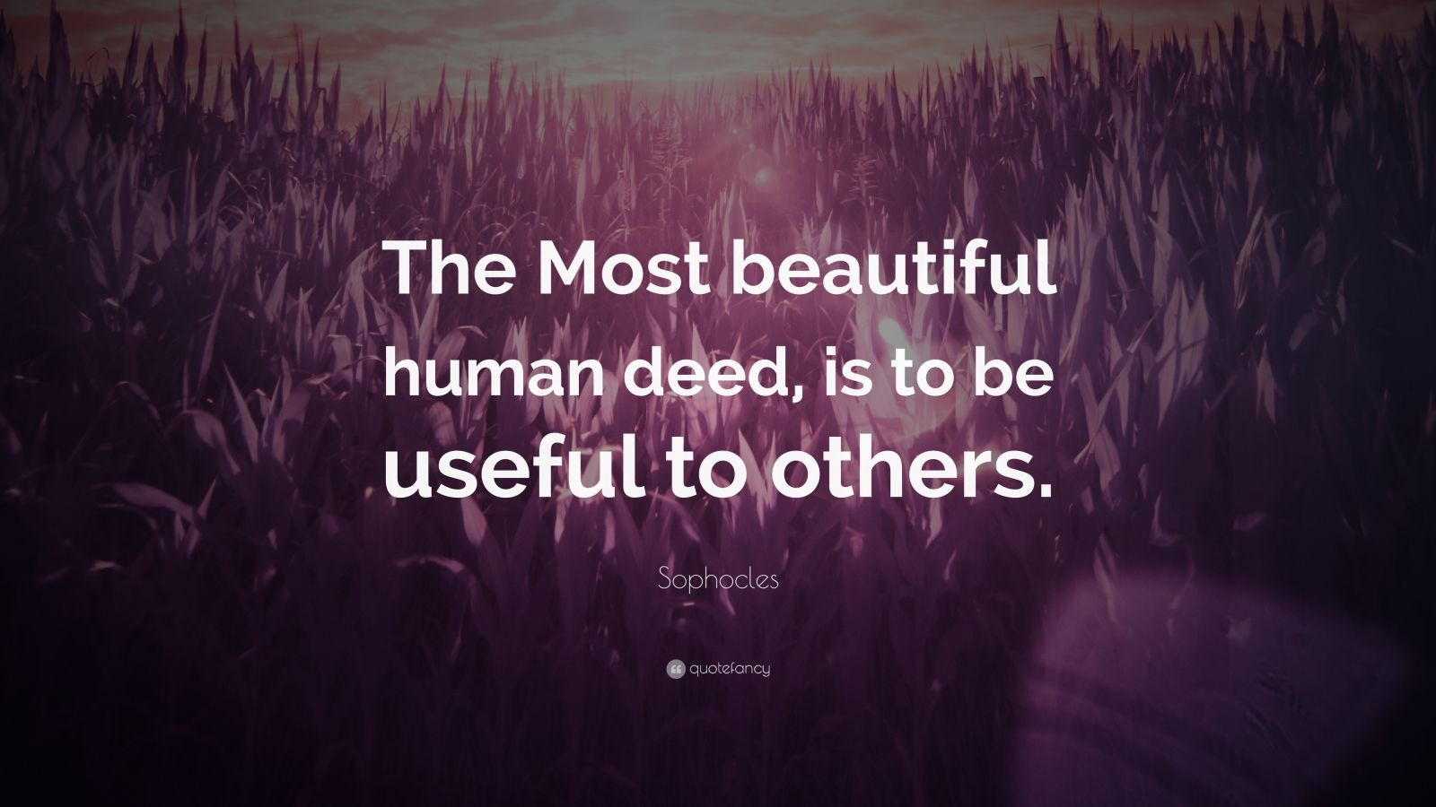 "Sophocles Quote: ""The Most beautiful human deed, is to be useful to others."""
