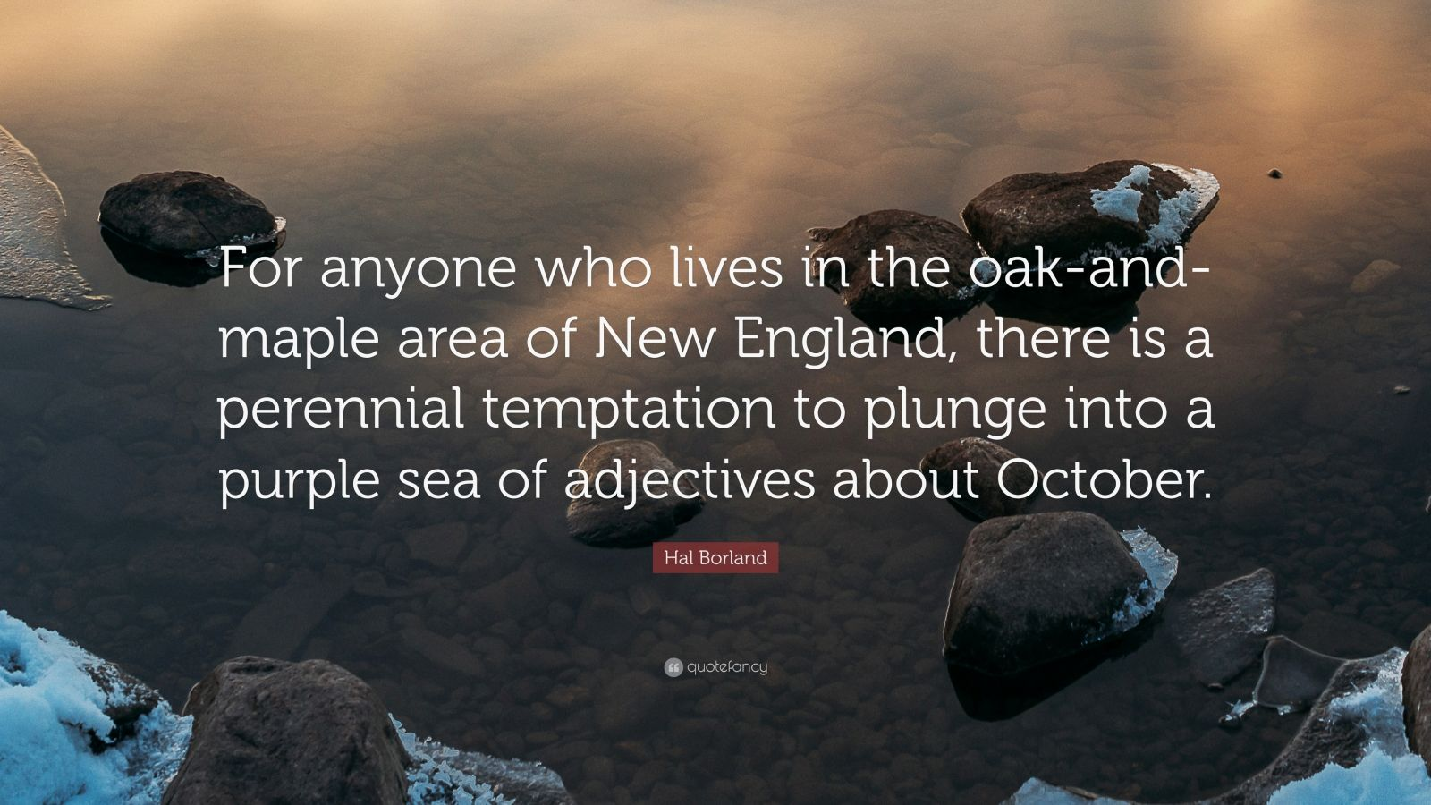 """Hal Borland Quote: """"For anyone who lives in the oak-and-maple area of New England, there is a perennial temptation to plunge into a purple sea of adjectives about October."""""""