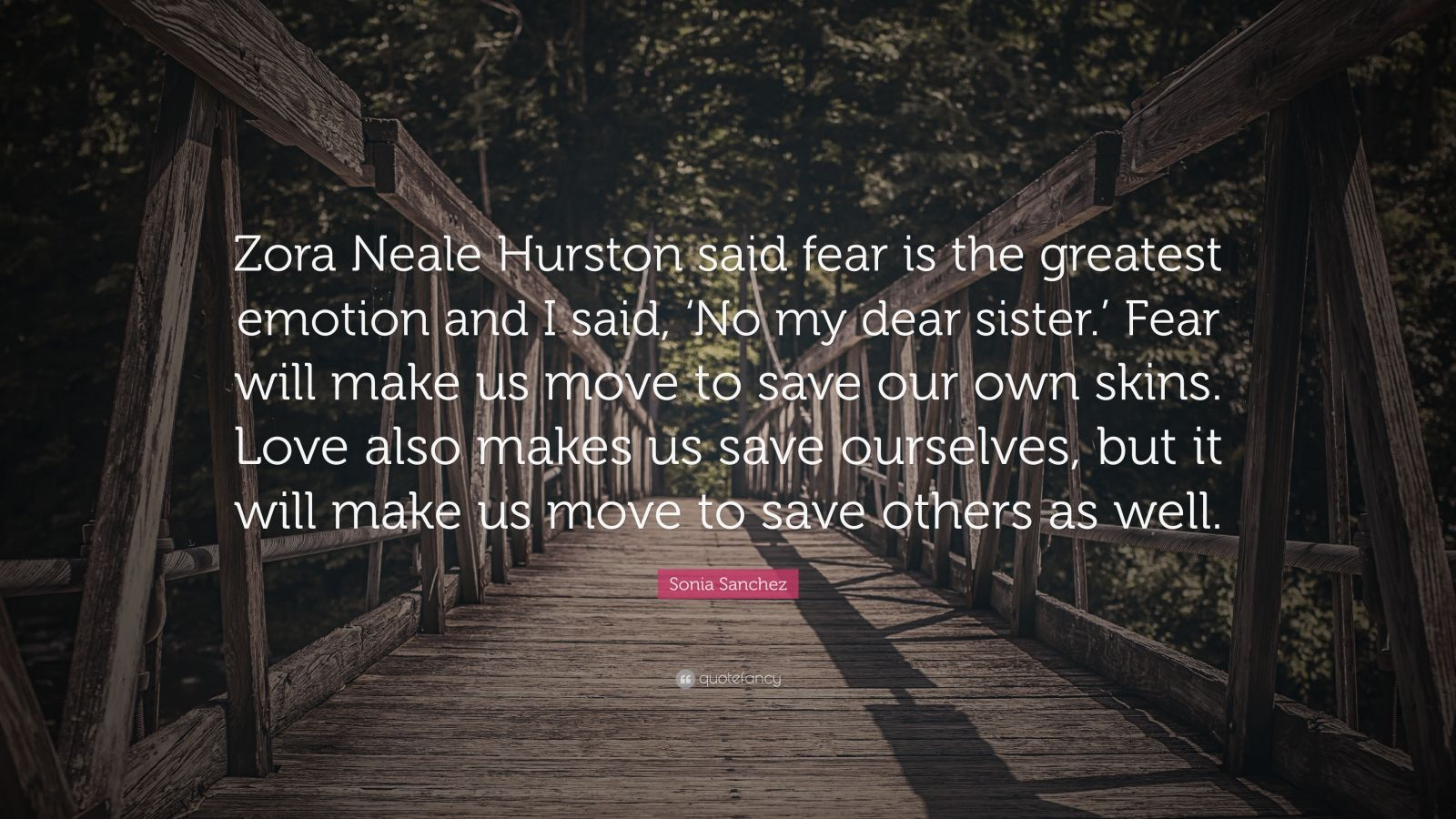 """Sonia Sanchez Quote: """"Zora Neale Hurston said fear is the greatest emotion and I said, 'No my dear sister.' Fear will make us move to save our own skins. Love also makes us save ourselves, but it will make us move to save others as well."""""""