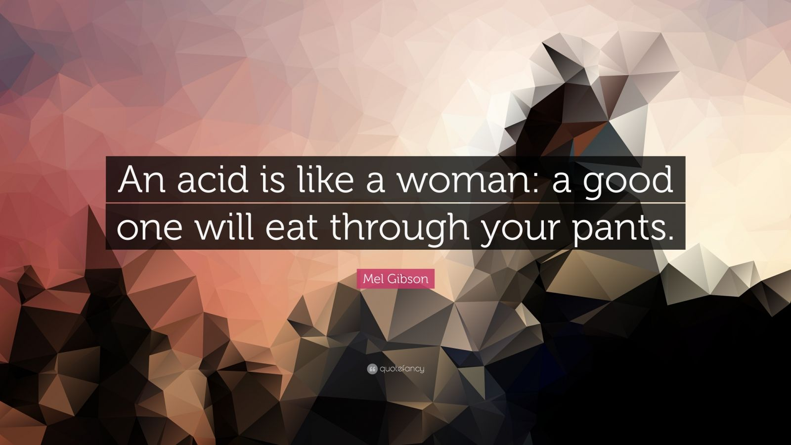 """Mel Gibson Quote: """"An acid is like a woman: a good one will eat through your pants."""""""