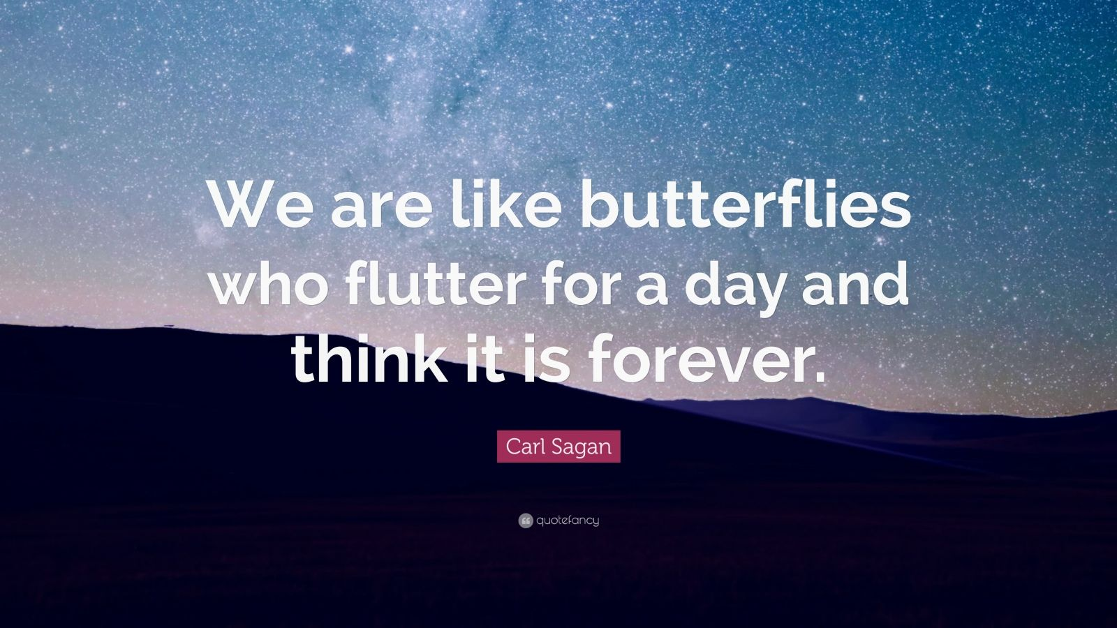Carl Sagan Quote We Are Like Butterflies Who Flutter For