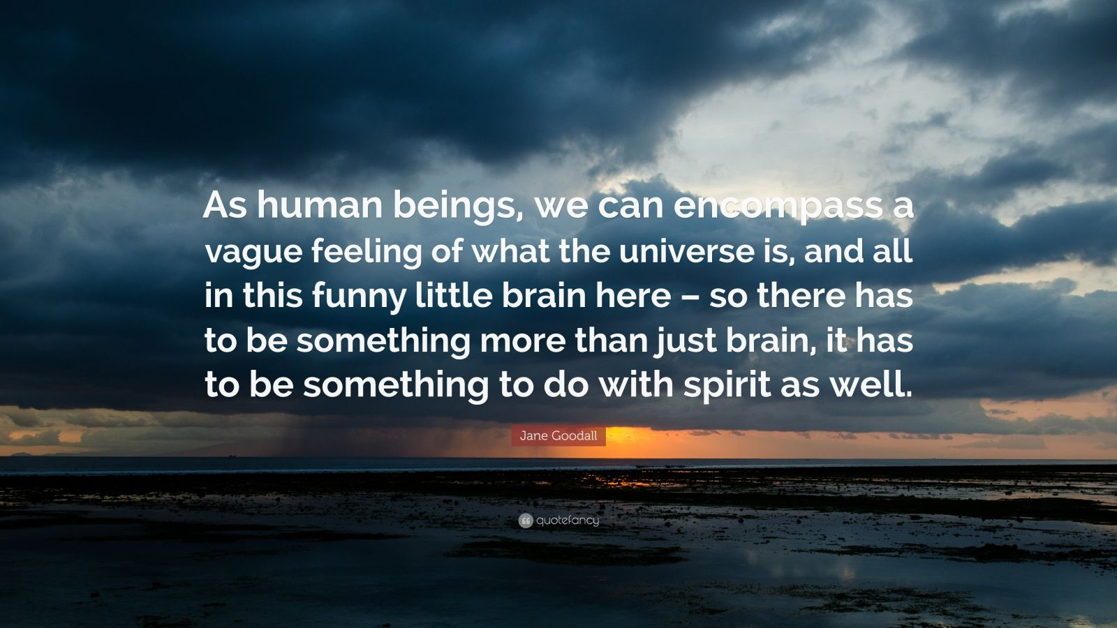 """Jane Goodall Quote: """"As human beings, we can encompass a vague feeling of what the universe is, and all in this funny little brain here – so there has to be something more than just brain, it has to be something to do with spirit as well."""""""