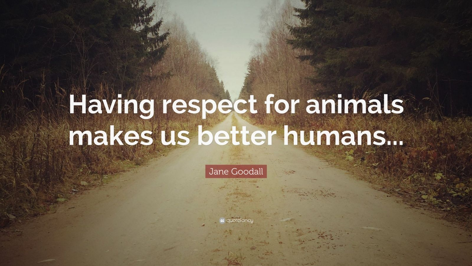 "Jane Goodall Quote: ""Having respect for animals makes us better humans..."""