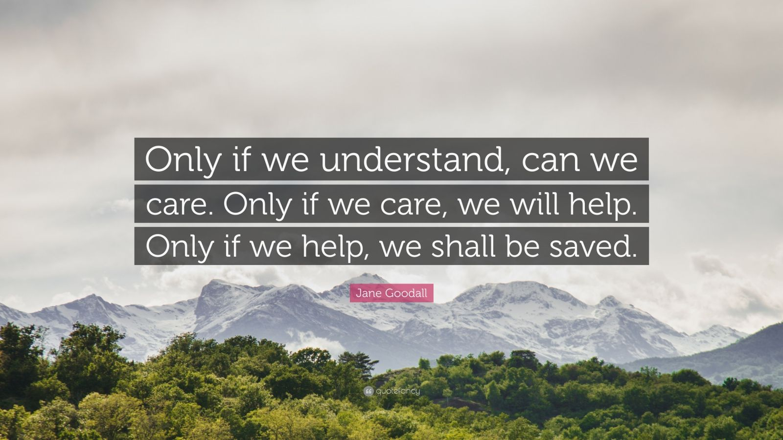 "Jane Goodall Quote: ""Only if we understand, can we care. Only if we care, we will help. Only if we help, we shall be saved."""