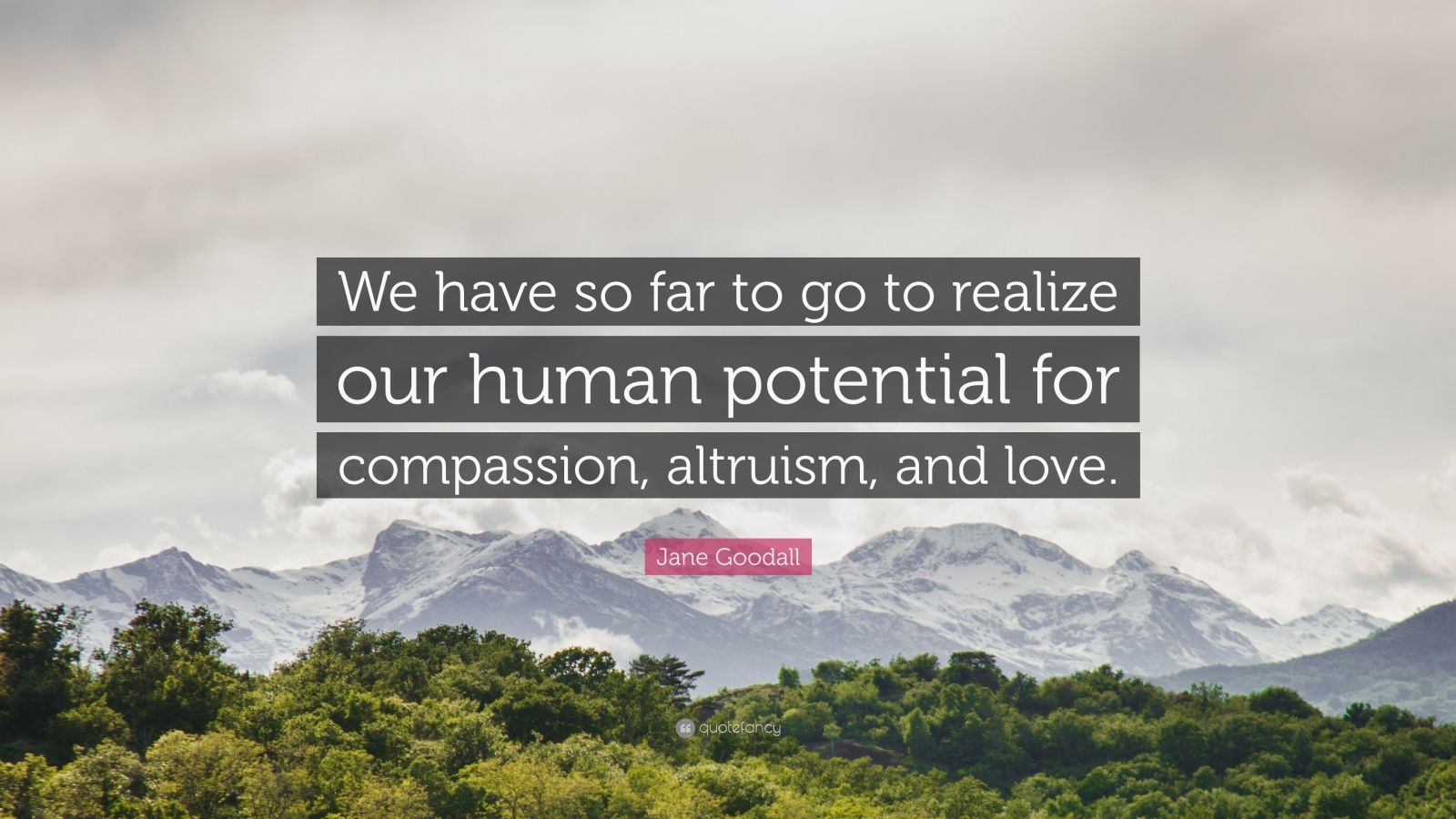 "Jane Goodall Quote: ""We have so far to go to realize our human potential for compassion, altruism, and love."""