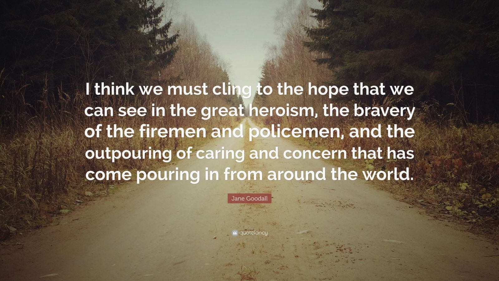 "Jane Goodall Quote: ""I think we must cling to the hope that we can see in the great heroism, the bravery of the firemen and policemen, and the outpouring of caring and concern that has come pouring in from around the world."""