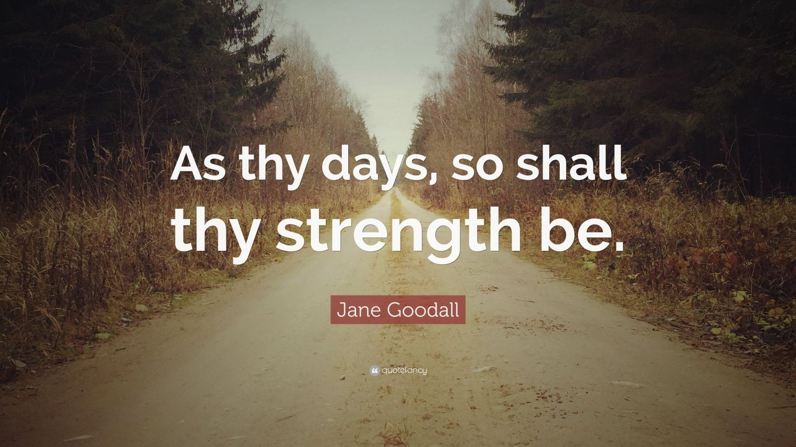 """Jane Goodall Quote: """"As thy days, so shall thy strength be."""""""