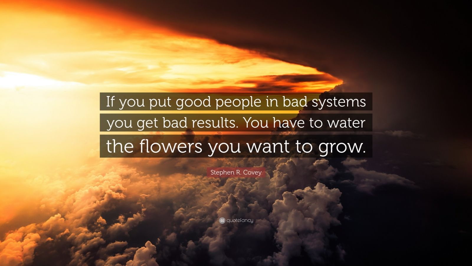 "Stephen R. Covey Quote: ""If you put good people in bad systems you get bad results. You have to water the flowers you want to grow."""
