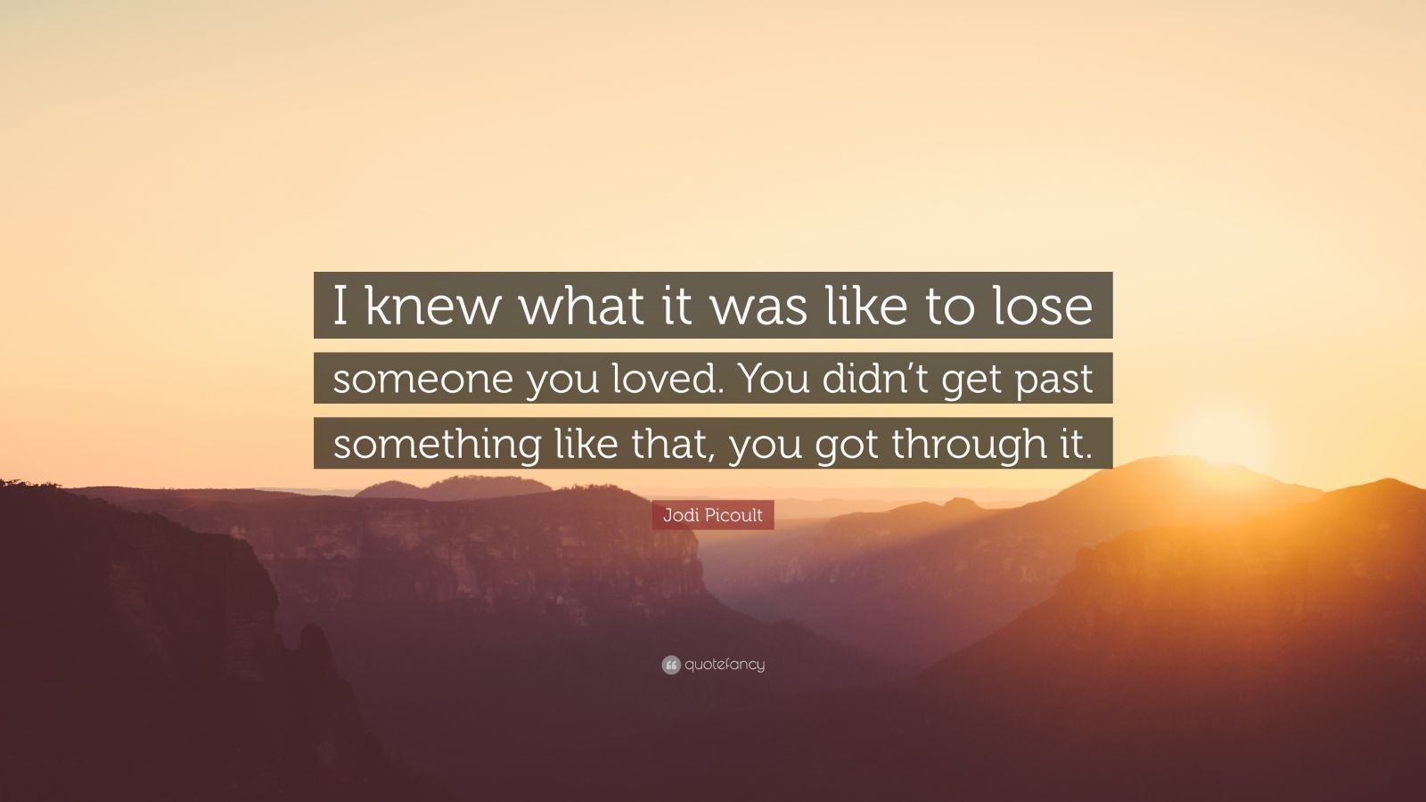 """Jodi Picoult Quote: """"I knew what it was like to lose someone you loved. You didn't get past something like that, you got through it."""""""