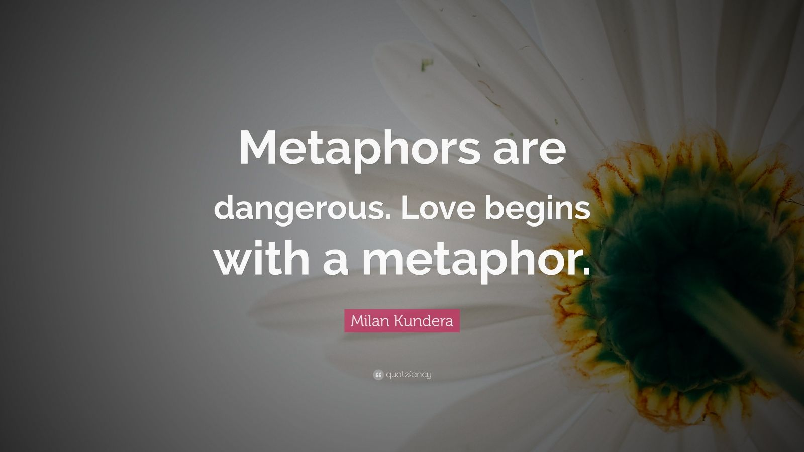 danger love quotes - managementdynamics