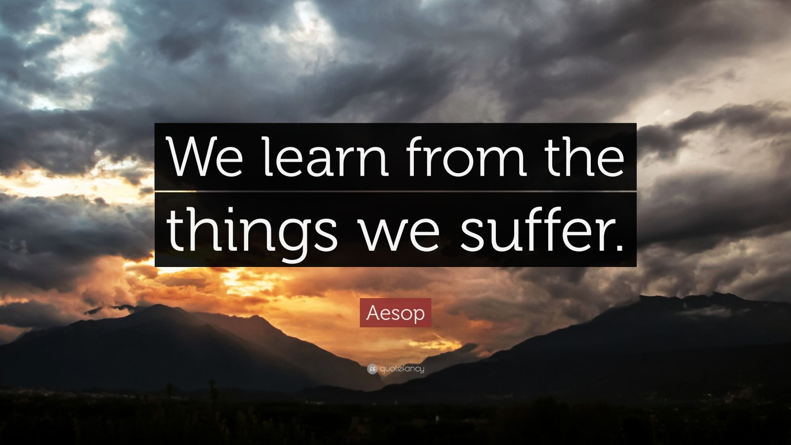 """Aesop Quote: """"We learn from the things we suffer."""""""