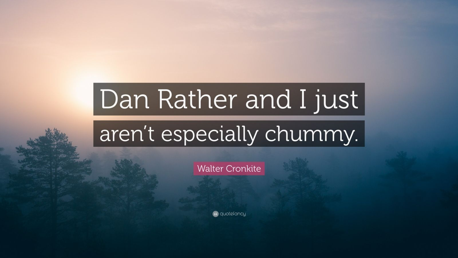 """Walter Cronkite Quote: """"Dan Rather and I just aren't especially chummy."""""""