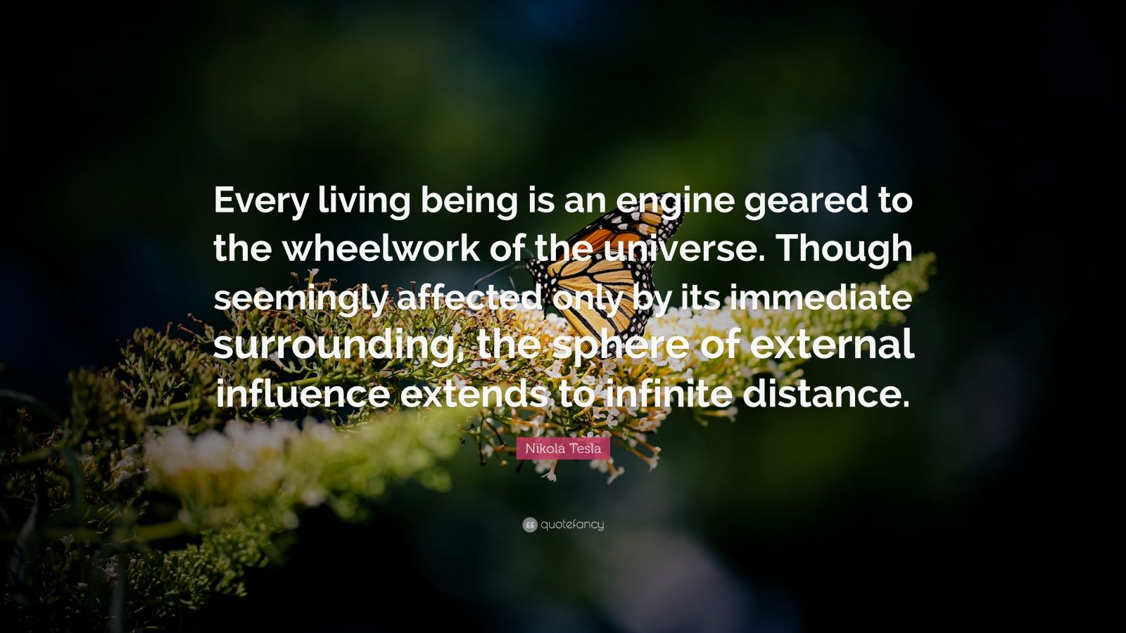 nikola tesla quote every living being is an engine