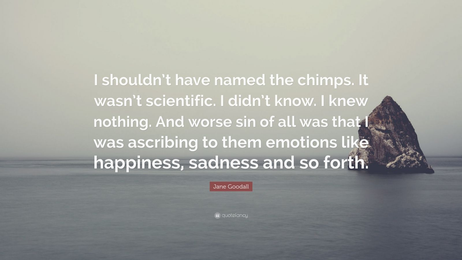 """Jane Goodall Quote: """"I shouldn't have named the chimps. It wasn't scientific. I didn't know. I knew nothing. And worse sin of all was that I was ascribing to them emotions like happiness, sadness and so forth."""""""