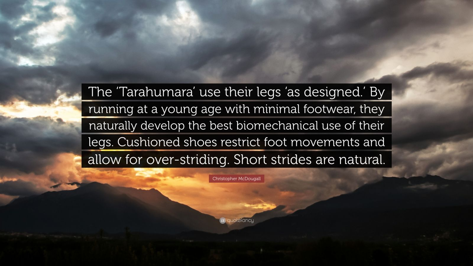 "Christopher McDougall Quote: ""The 'Tarahumara' use their legs 'as designed.' By running at a young age with minimal footwear, they naturally develop the best biomechanical use of their legs. Cushioned shoes restrict foot movements and allow for over-striding. Short strides are natural."""