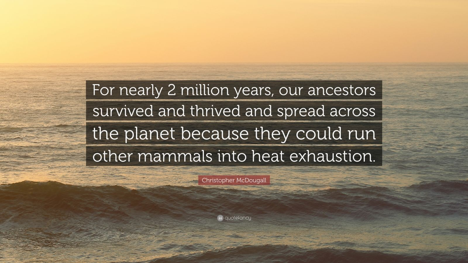 "Christopher McDougall Quote: ""For nearly 2 million years, our ancestors survived and thrived and spread across the planet because they could run other mammals into heat exhaustion."""