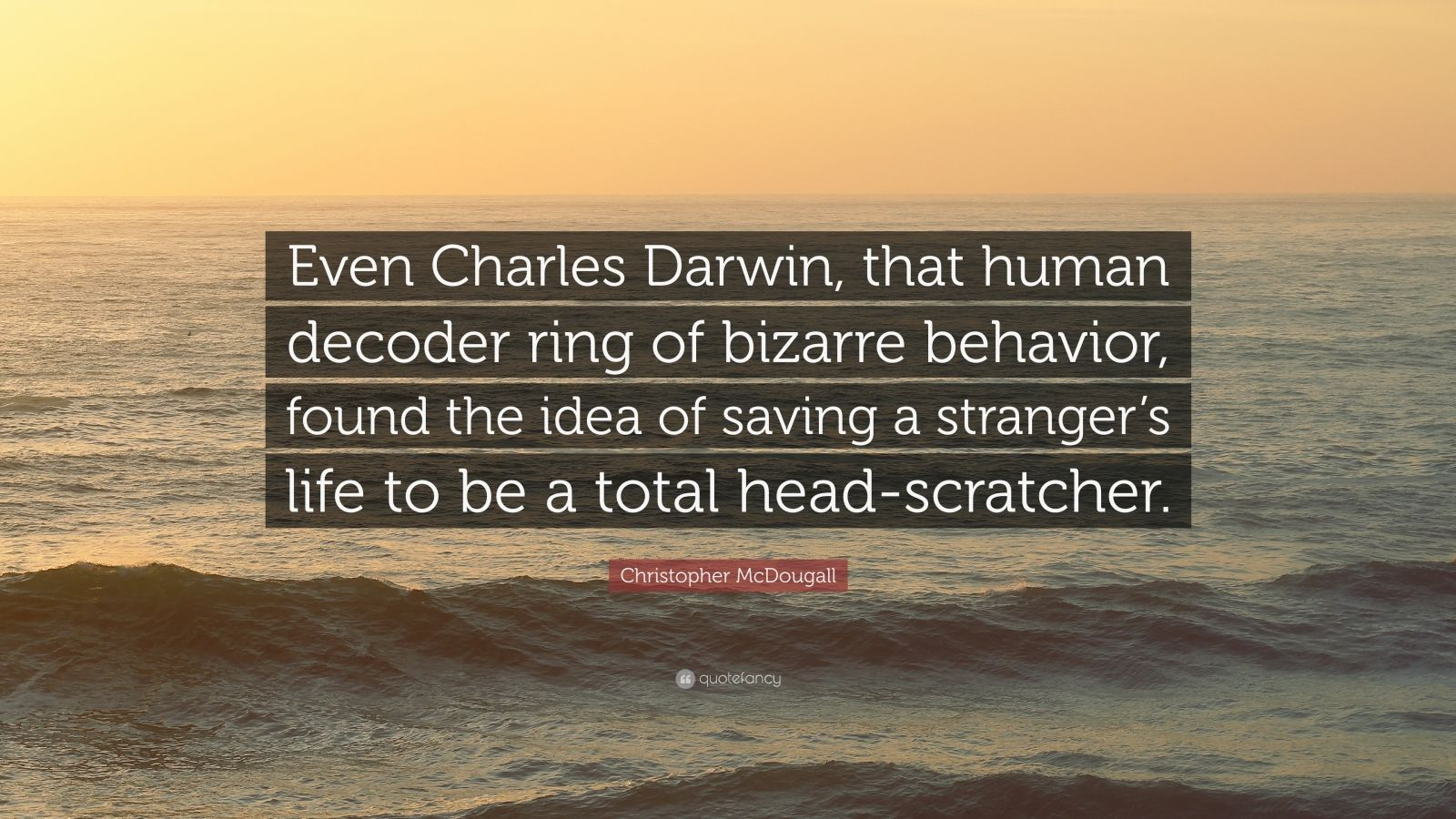 "Christopher McDougall Quote: ""Even Charles Darwin, that human decoder ring of bizarre behavior, found the idea of saving a stranger's life to be a total head-scratcher."""