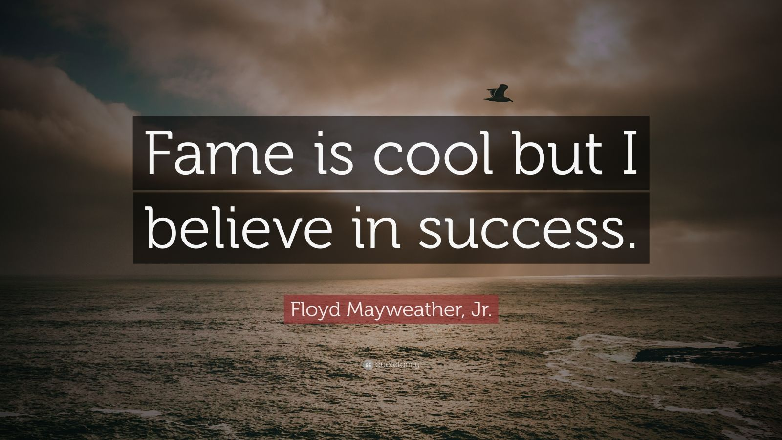 "Floyd Mayweather, Jr. Quote: ""Fame is cool but I believe in success."""
